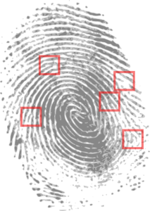 fingerprint biometrics to replace passwords for stronger data security