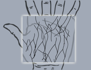 Palm vein biometrics