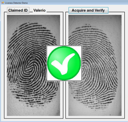 Biometric security for mobile environment