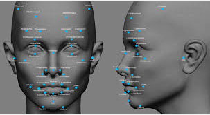 Facial recognition biometric security