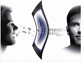 Voice biometric security