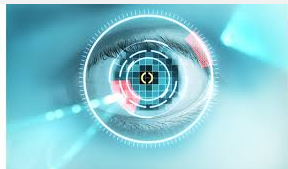 Iris recognition biometric security