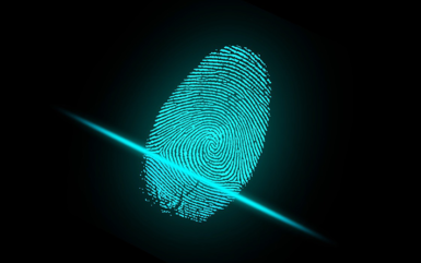 Best Biometric SDK for Accurate and Reliable Identity Management