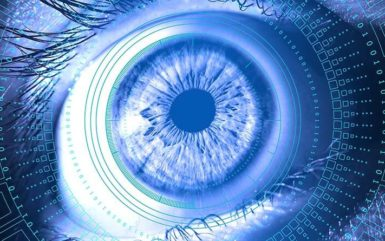 Application of Iris Biometric Authentication in Different Sectors
