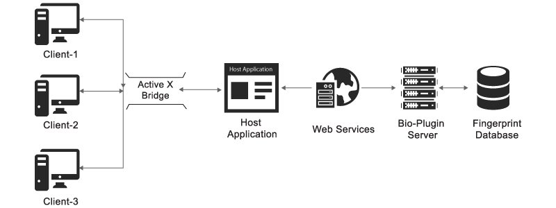 Biometric SDK Integration into Web-based Software