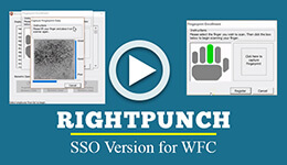 rightpunch-sso-version-for-wfc-m2sys
