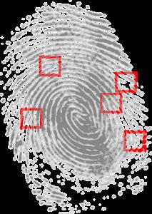 fingerprint biometrics to replace passwords for stronger data security