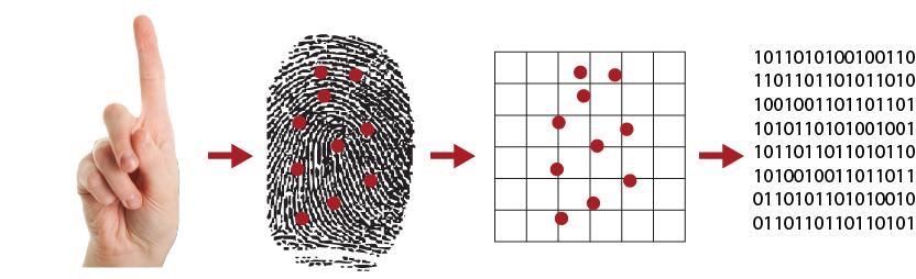 how-fingerprint-scanner works