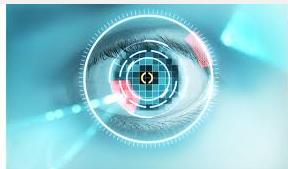 Iris recognition biometric security