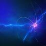 The Role Of Biometrics In Neuromarketing